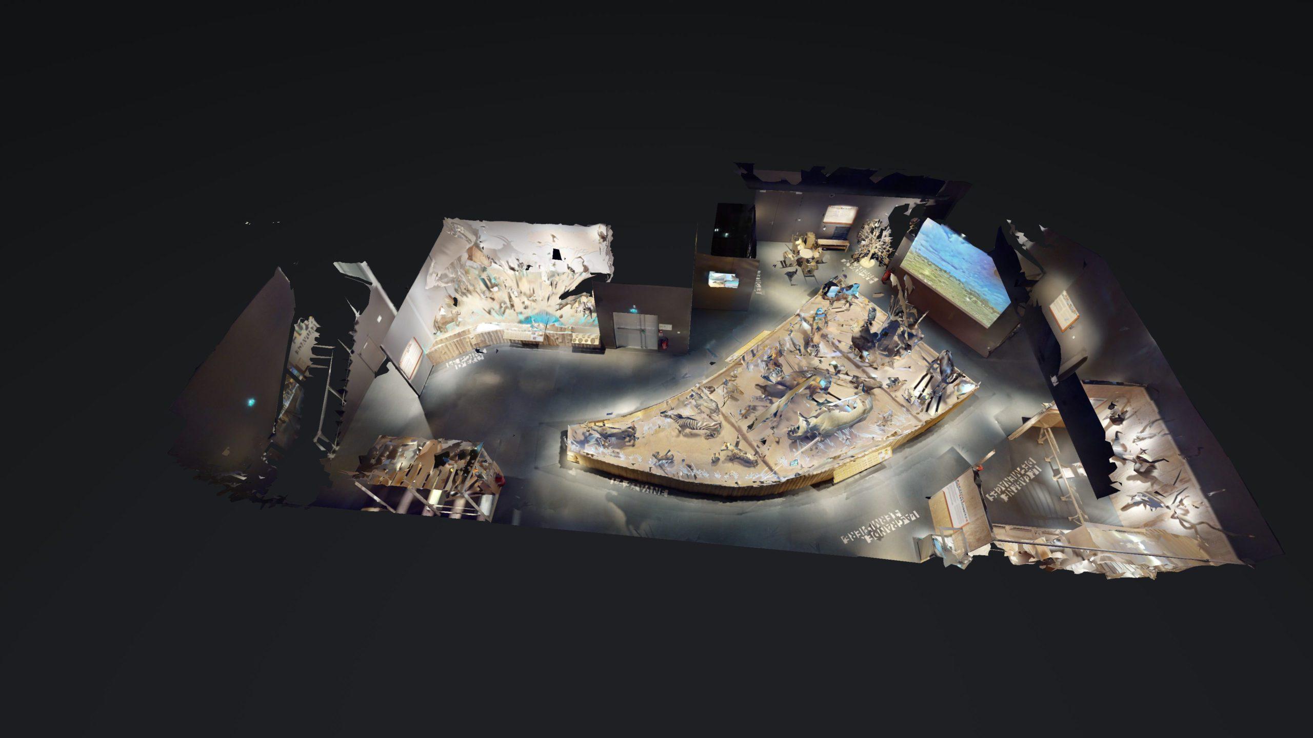 Plan de l'exposition Afrique, savane sauvage