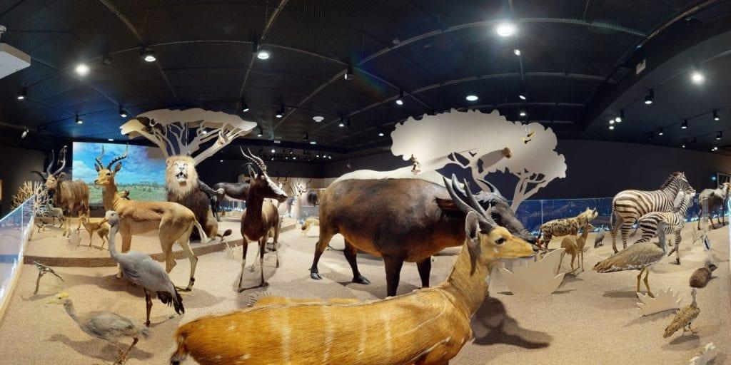 visite virtuelle de musée 3D