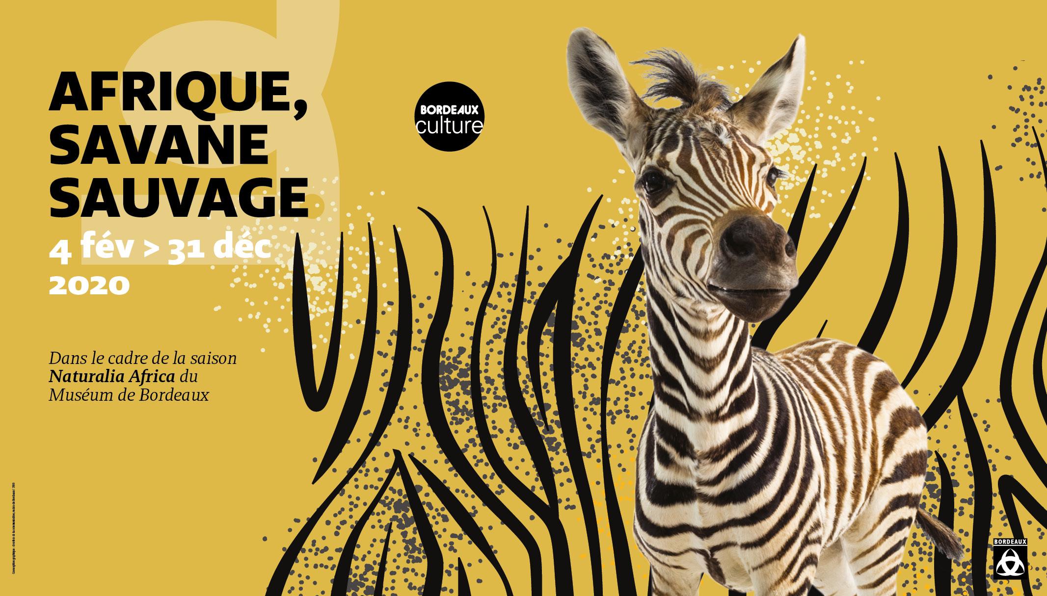 Affiche Afrique savane sauvage